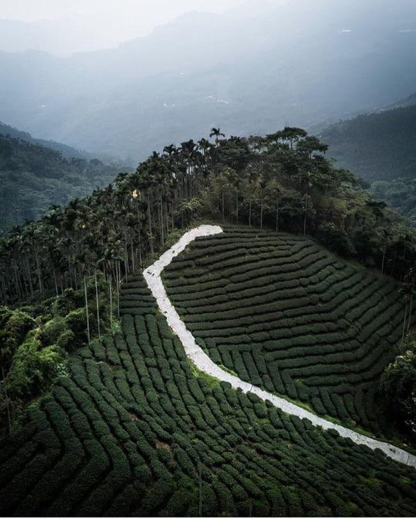 Du lịch Đài Loan 47