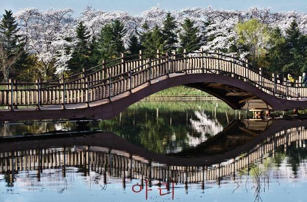 Du lịch Hàn Quốc chi tiết 10