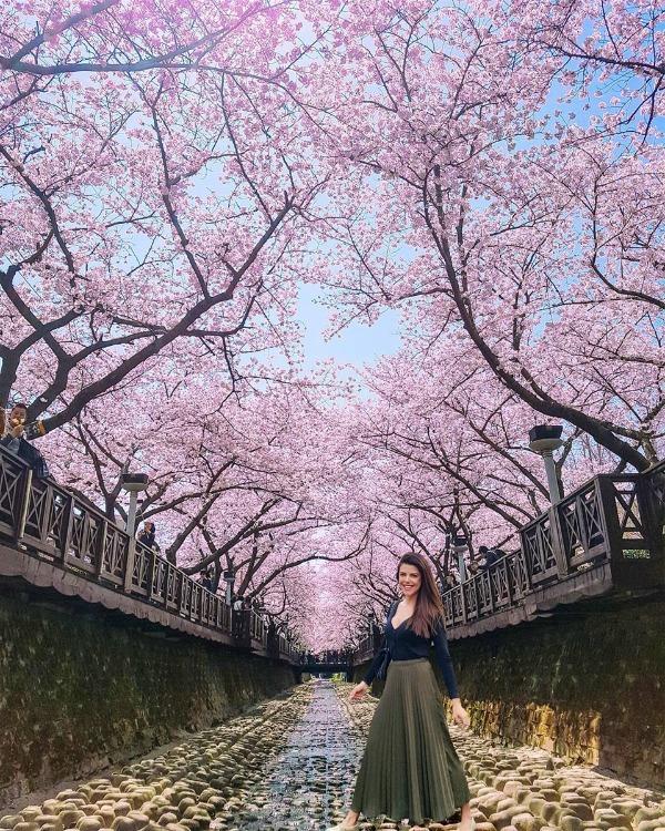 Du lịch Hàn Quốc chi tiết 7