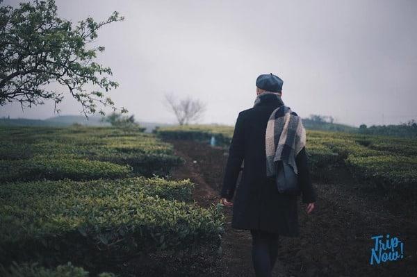 Du lịch Mộc Châu 30