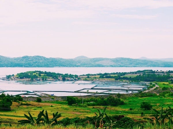 Du lịch Phú Yên 13