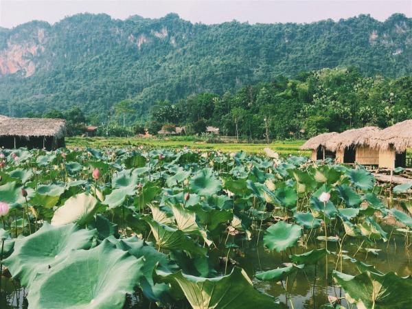 Kinh nghiệm du lịch Hà Giang 7