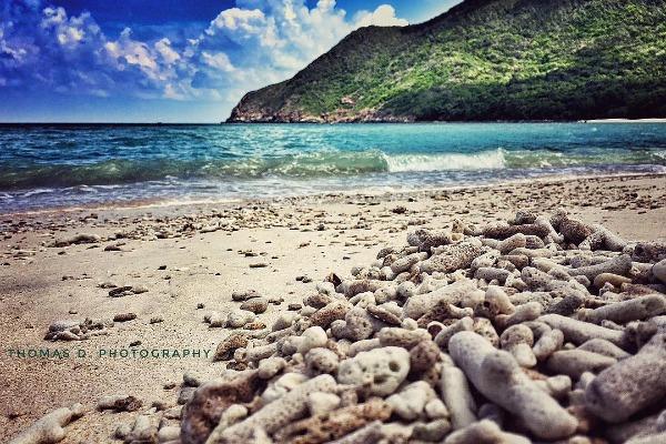 du lịch Côn Đảo 12