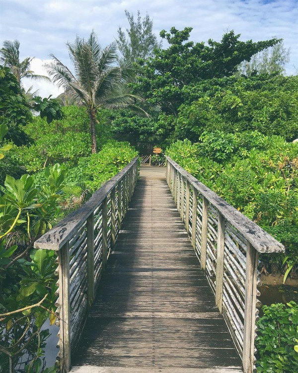 du lịch Côn Đảo 3